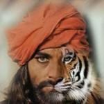 Sandokan morphing into a tiger